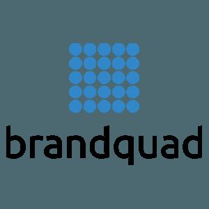 Проект по интернет-маркетингу для Brandquad